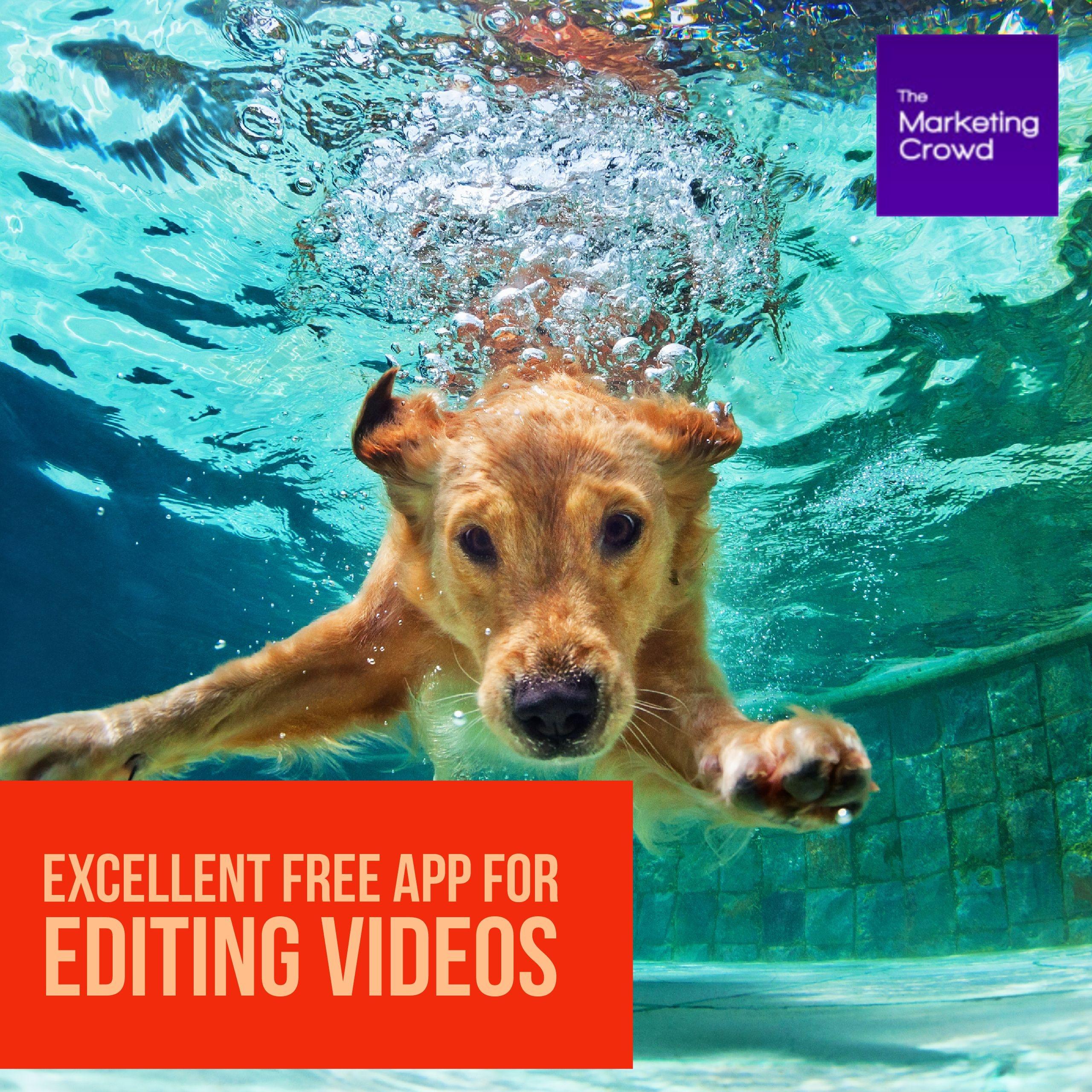 Vlogit video editing app